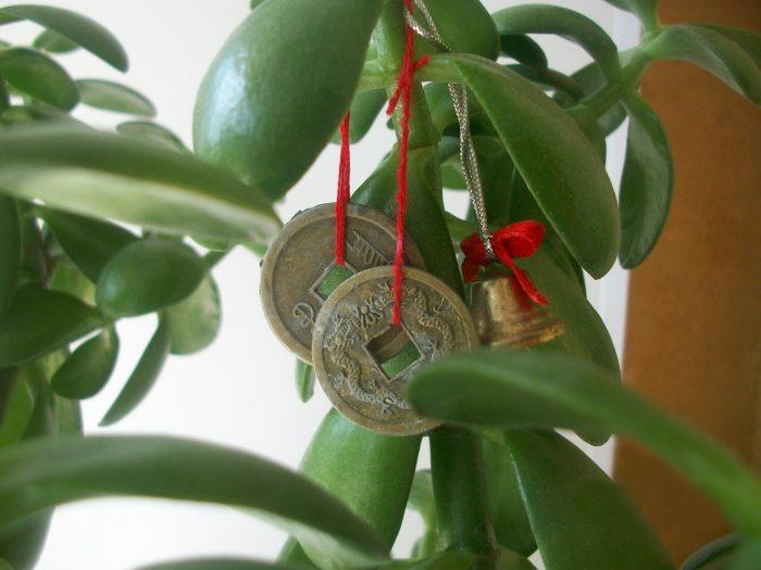 китайские монетки по фен шуй