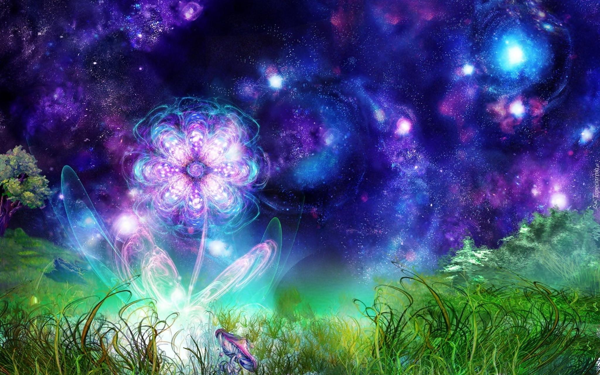 Красивые и волшебные картинки