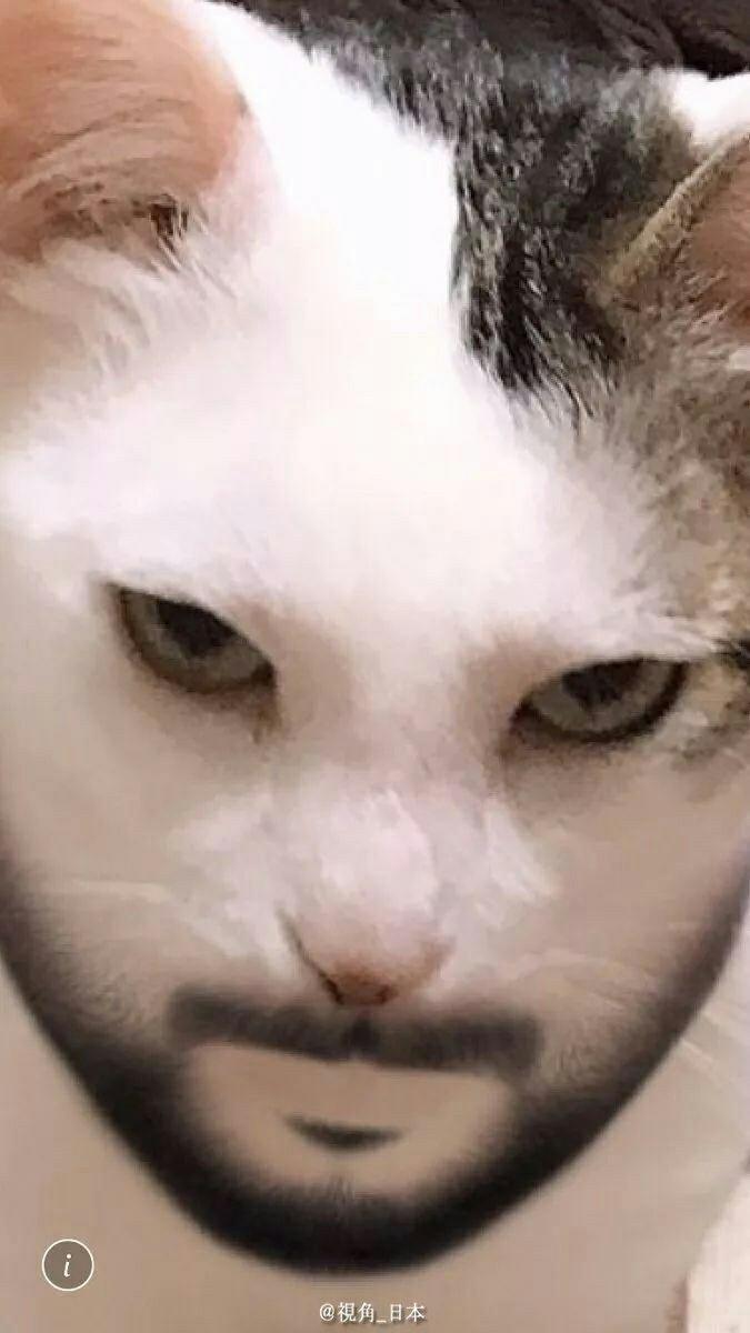 фильтр для животных с человеческим лицом