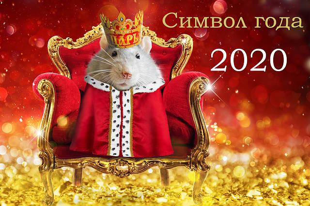 Новый год 2020 Металлической Крысы