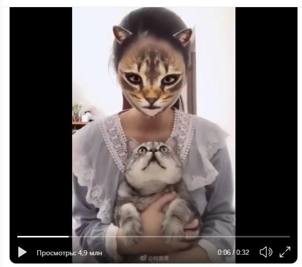 фильтр превращает в кошку