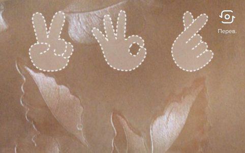 Фильтр с жестами и фото для видео