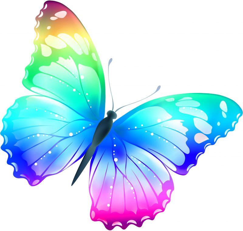 Фильтры с бабочками в инстаграме