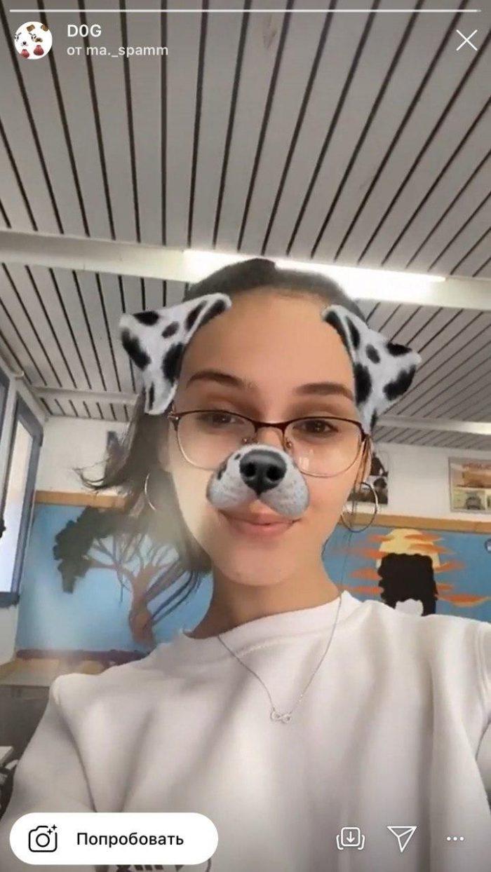 Маска с собакой в инстаграме