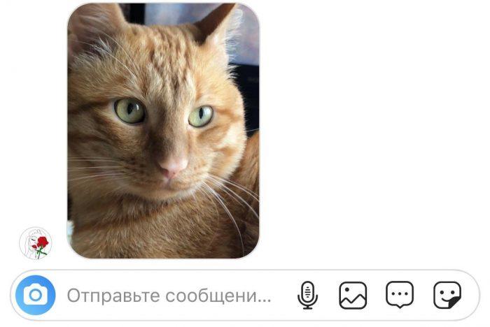 Как беспалевно сделать скриншот фото из директа в инстаграме