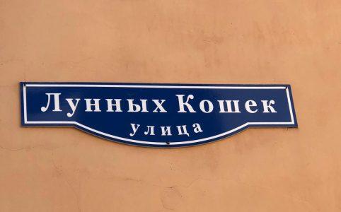 Улица Лунных Кошек в Санкт-Петербурге