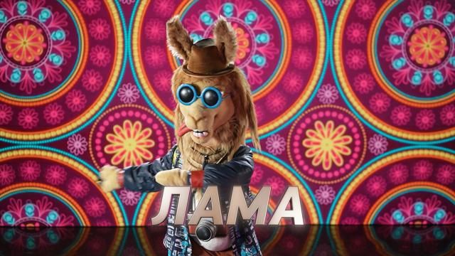 шоу маска лама