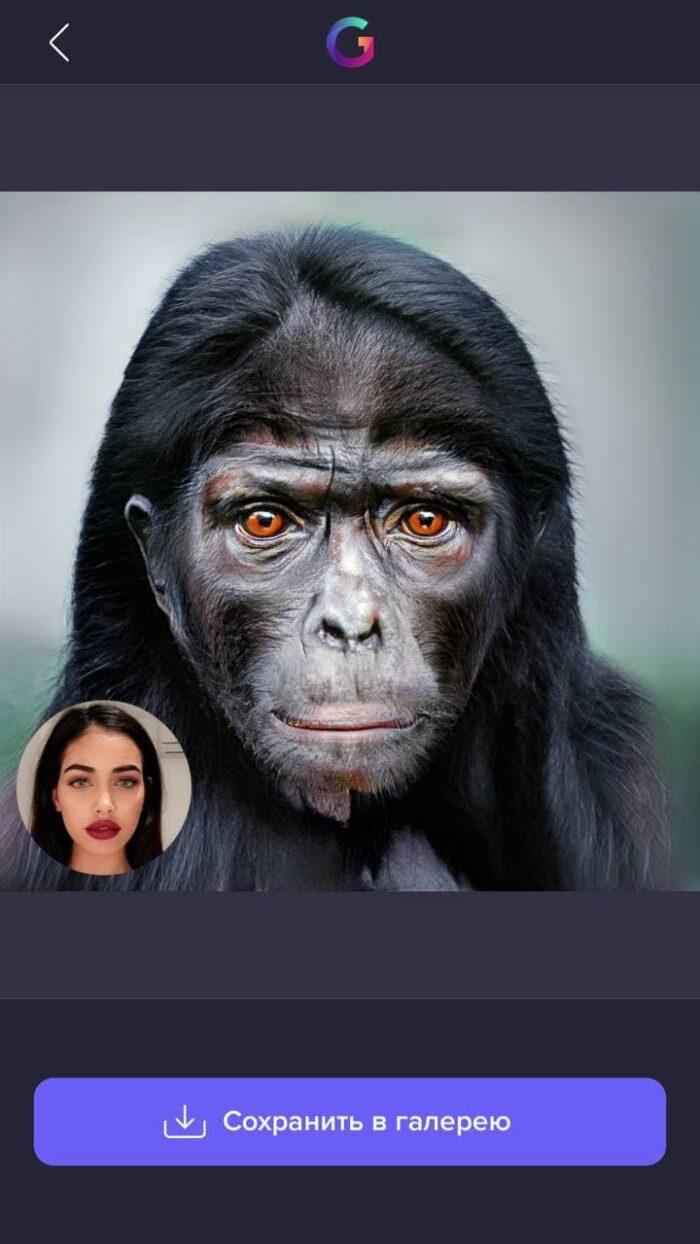 Приложение показывает, как выглядел мой предок
