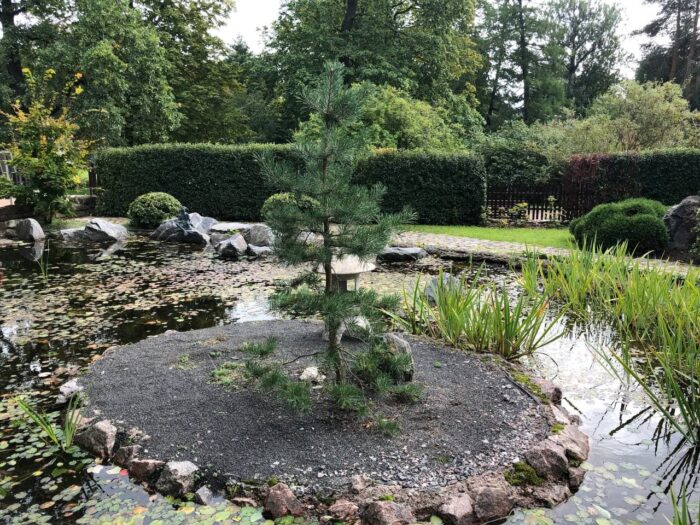 Японский сад в Ботаническом саду Петра Великого в Санкт-Петербурге