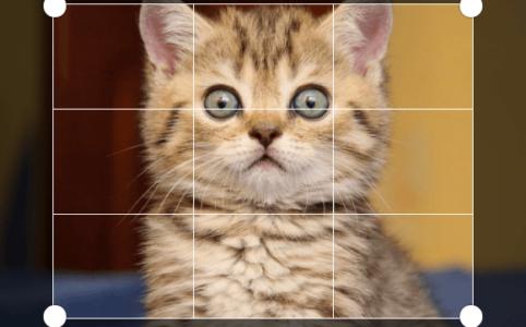 Эффект обрезки фото