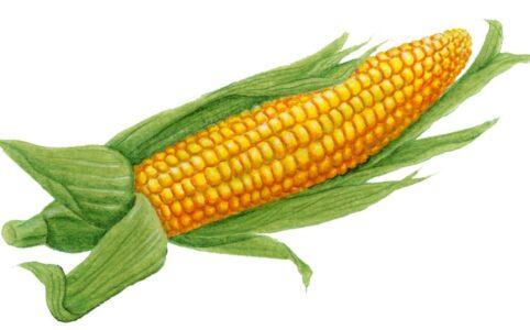 Маска Горячая кукуруза в Инстаграме