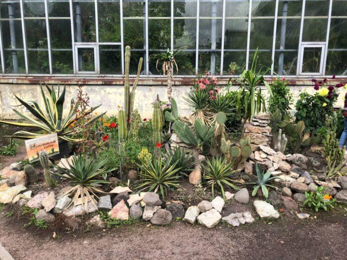 Парк-дендрарий Ботанического сада в Санкт-Петербурге