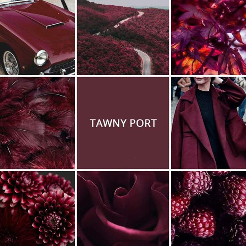 tawny port pantone